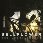 bellflower-lotus-factor