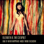 original-noise-trade-cover-art-elizabeth--the-catapult