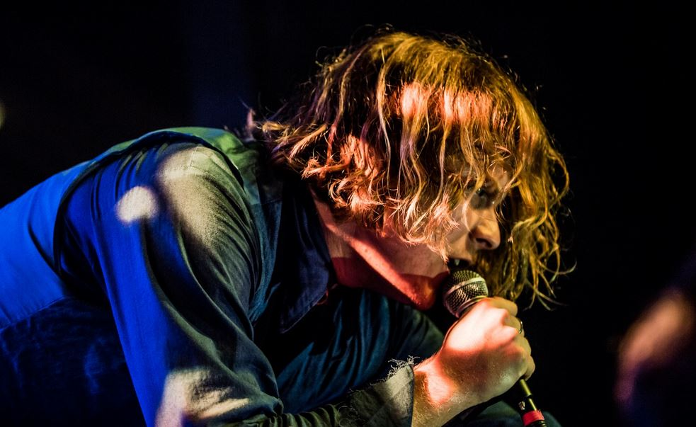 TY SEGALL – The Strange Animal